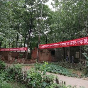 鄭州大學聯合河南三維建筑科技公司實施西平縣傳統民居加固